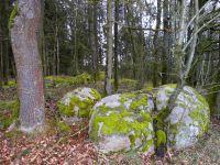 13_Felsengruppe_im_Wald_bei_Hoermannsberg_Elisabeth_Rhn