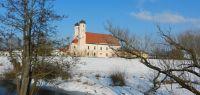 48-Oberalteich.-Eisesklte-Mitte-Januar