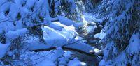 55-Sumava---tiefverschneit-und-eiskalt