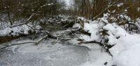 62-am-letzten-Eistag-am-kleinen-Haselbacher-Urwald-an-der-Menach