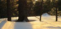 67-warmes-Licht-der-untergehenden-Sonne-am-Grenzkamm
