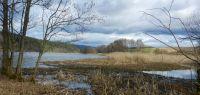 85-Zwischen-den-Jahreszeiten-am-Blaibacher-See