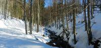 88-Am-Rindlbach---700-Meter-hoeher---herrscht-noch-tiefer-Winter