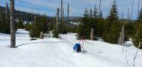 90-Mitte-Maerz--Schneehoehe-gut-ein-Meter-in-der-Grenzregion-hinterm-Lusen