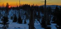93-mit-dem-Sonnenaufgang-im-Rachelgebiet-beschliessen-wir-unsere-Fotostreck-bm