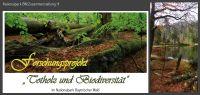 32-Forschungsprojekt-Nationalpark-Totholz-und-biodiversitaet