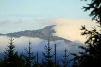 H39_Sind_mystische_Tage_ziehen_Wolken_ueber_Berge_lagern_zaehe_Nebel_in_den_Taelern_hallen_tiefe_Brummer_uebern_Wald