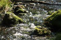 H83_Wo_wilde_Wasser_rauschen_ist_der_Kreislauf_des_Lebens