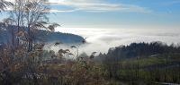 10-Buchet---Nebel-und-Sonne-im-Wettstreit