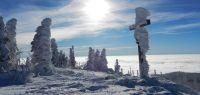 030-dez-17-Lusenmandl-geformt-vom-Schnee-und-Sturm-ft