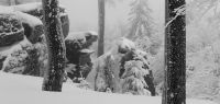 96-jan-18-tiefster-Winter-nach-einer-Woche-Schneefall---am-Hirschenstein-bm