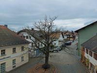 2020_11_04_13_entlaubte_Friedenseiche_am_Abschluss_der_Burgstrasse