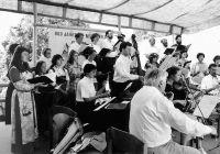 13_Salonorchester_und_Singkreis_spielten_und_sangen_im_Burghof