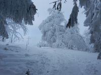 02_Winter-wunderland_Proeller