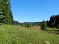 048-Reschbachtal-bei-Mauth---eine-der-schoensten-Tallandschaften-im-Woid---ft