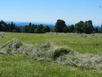 052-Hier-standen-einst-die-Haeuser-des-Dorfes-Buchwald---mit-Alpenblick---ft