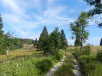 060-Weg-auf-1000-m-Hoehe-in-Richtung-Hinterscheuereck---ft