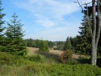 061-Hier-standen-in-Sichtweite-zur-Grenze-Haeuser-von-Hinterscheuereck-auf-fast-1000-m-Hoehe---ft
