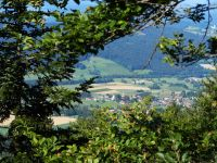 077-Steinbuehl-vom-Huettensteinfelsen-am-Kaitersberg---ft