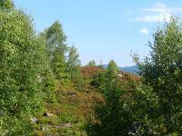 084-Gletscherschliff-des-einstigen-Kleinen-Regen-Gletschers-im-Rachel-Nordkar---ft