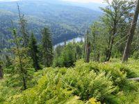 091-Der-Rachelsee---entstanden-als-eiszeitlicher-Karsee-nach-Abschmelzung-des-Rachelgletschers---bm