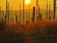 148-Sonnenaufgang-am-Mittagsberg---bm