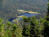 166-Kleiner-Arbersee-mit-den-schwimmenden-Inseln-im-Zoom---ft