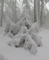 29-duifa-Schnee---Zeit-fuer-d-Schneehexn-bm