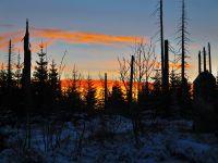 135-Vor-Sonnenaufgang-auf-dem-Sommerweg-zum-Lusen-unterwegs---bm
